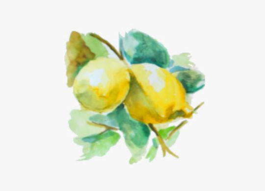 limones3